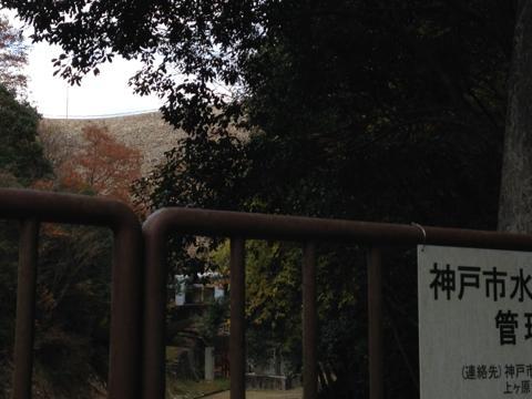 kawashimo_21.jpg
