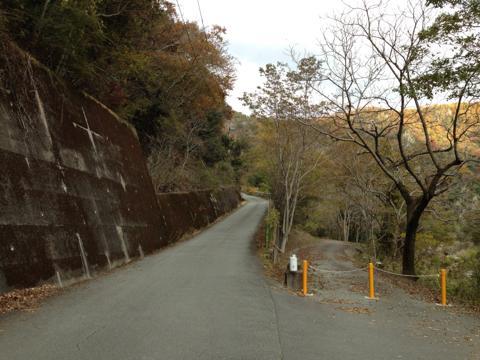 kawashimo_22.jpg