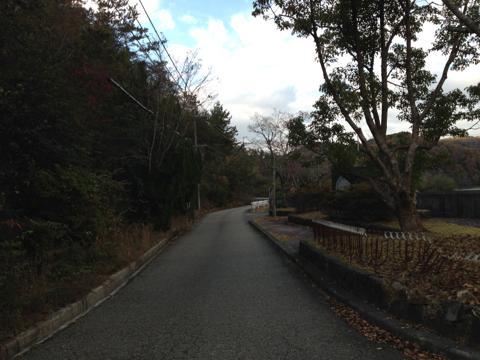 kawashimo_34.jpg