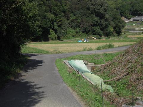 kirimiyama_08.jpg