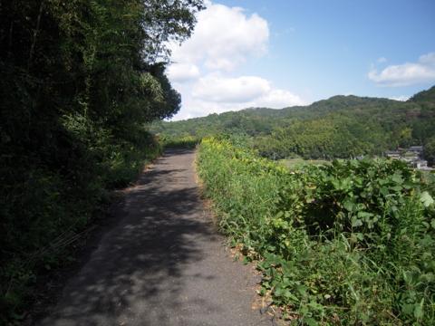 kirimiyama_16.jpg