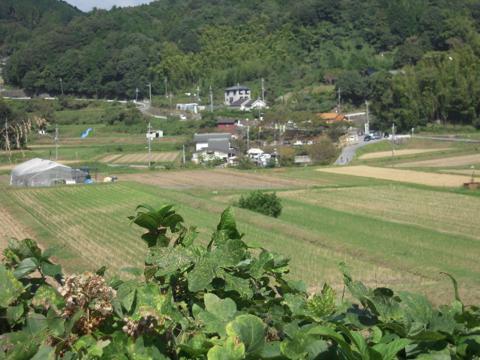 kirimiyama_17.jpg