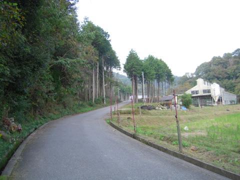 kobako_12.jpg
