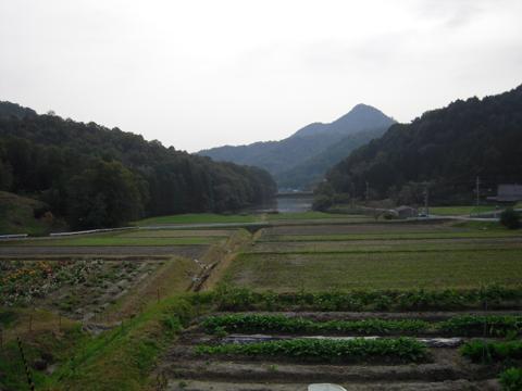 kobako_36.jpg