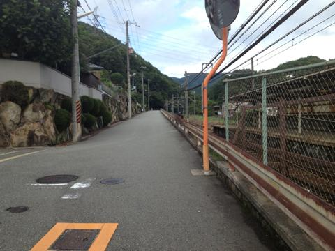 kodaiji_03.jpg