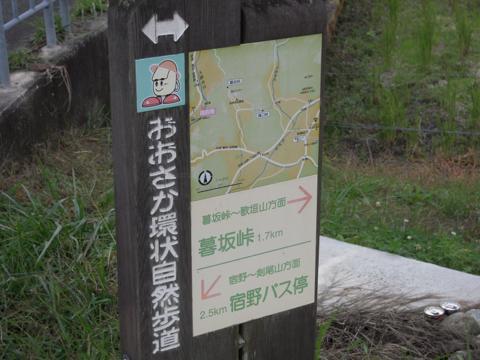 kuresa_03.jpg