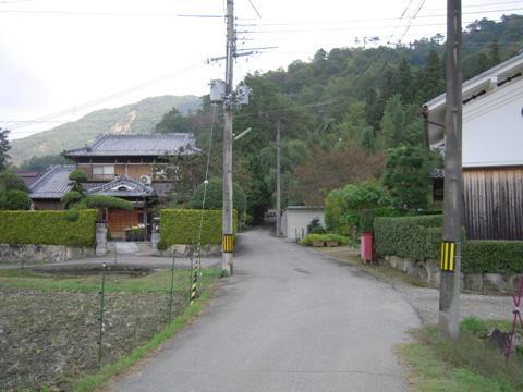 kuresa_04.jpg