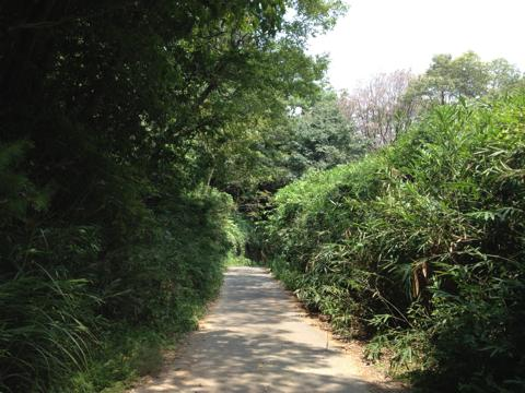 kurumatsukuri_37.jpg