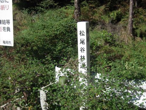 matsuo_04.jpg