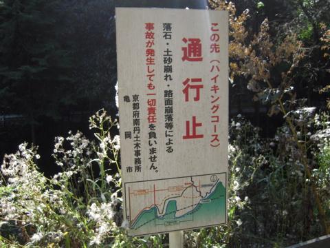 matsuo_06.jpg