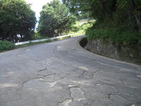 nishiyama_11.jpg