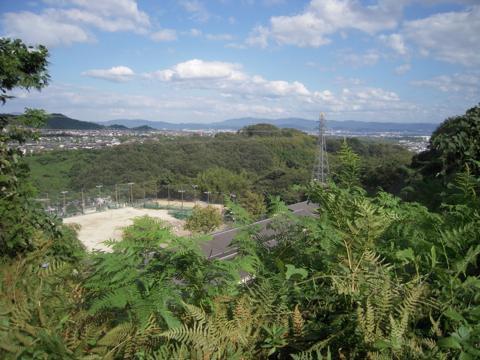 nishiyama_13.jpg