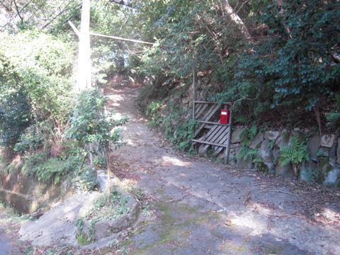 nishiyama_46.jpg