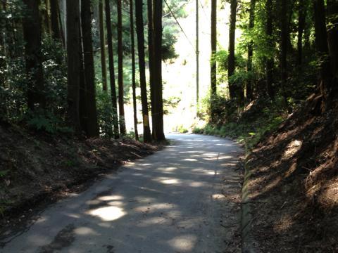 okayama_57.jpg