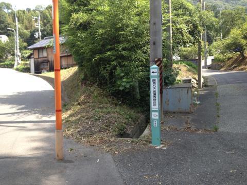 ryuoh_01.jpg