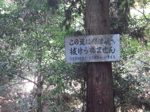 saiho_27.jpg