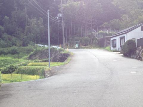 sakaisakai_08.jpg