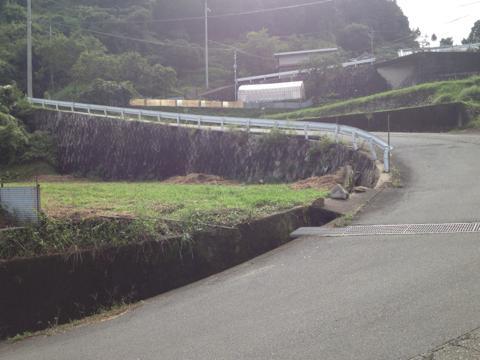 sakaisakai_11.jpg