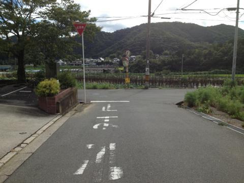 sakaisakai_21.jpg
