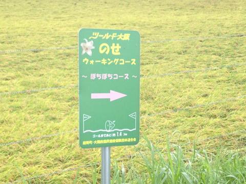 sakaisakai_24.jpg