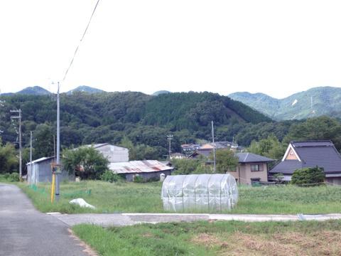 sakaisakai_29.jpg