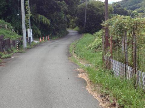 sakaisakai_34.jpg