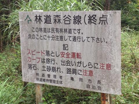 sakuragi_12.jpg