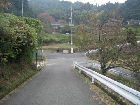 sakuras_08.jpg