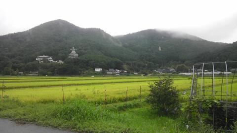 shakaowada_03.jpg