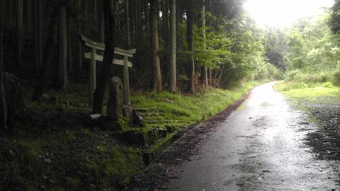 shakaowada_15.jpg