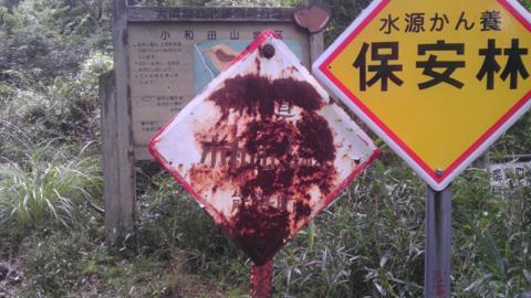 shakaowada_19.jpg