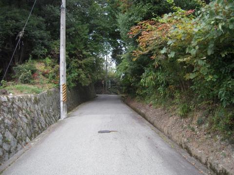 shikak_19.jpg