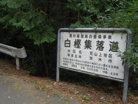 shikak_25.jpg