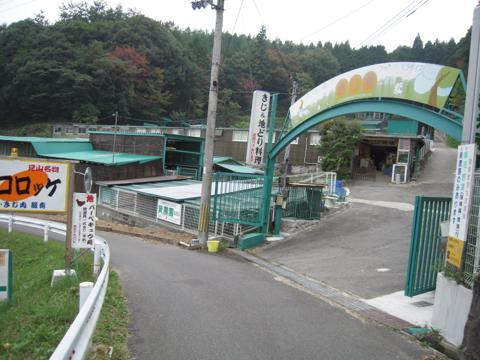 shikak_35.jpg