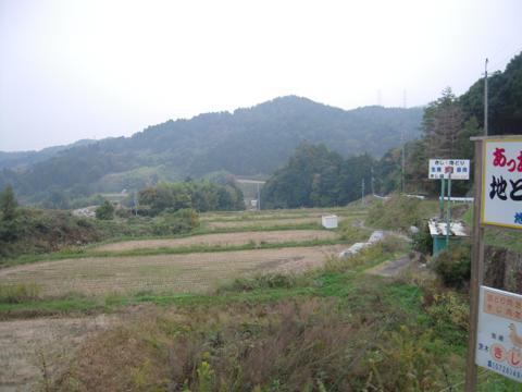 shikak_36.jpg