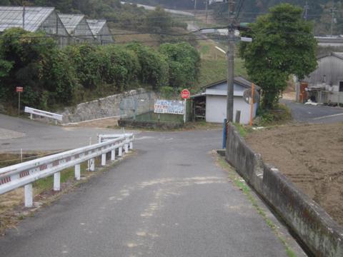 shikak_42.jpg