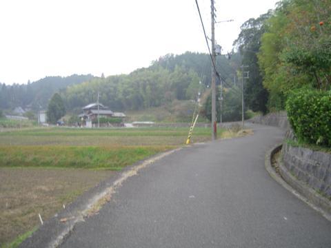 shikak_46.jpg