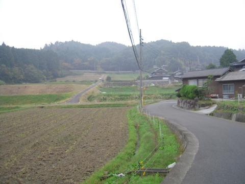 shikak_47.jpg
