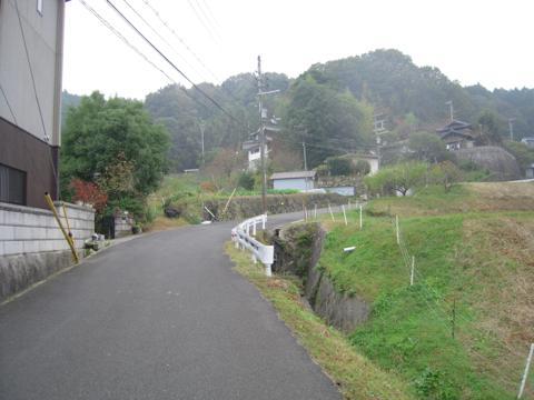 shikak_51.jpg
