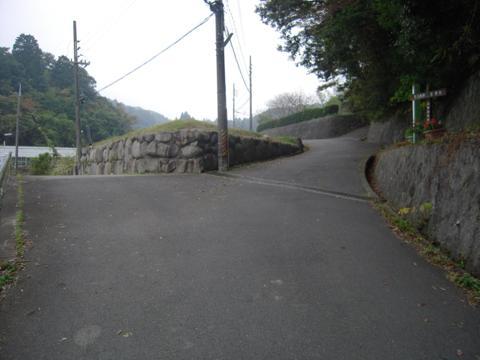 shikak_66.jpg