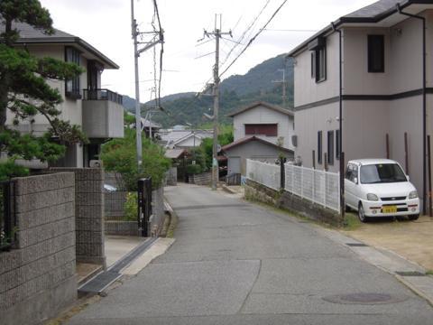 shimifuna_03.jpg