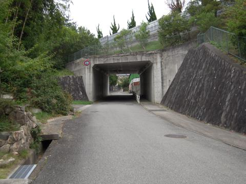 shimifuna_08.jpg