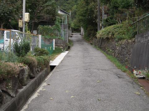 shimifuna_10.jpg