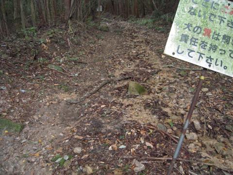 shimifuna_20.jpg