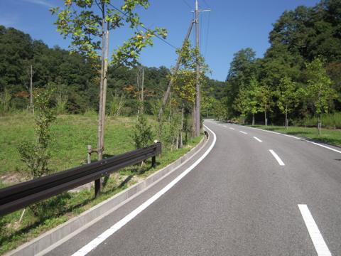 sumire_09.jpg