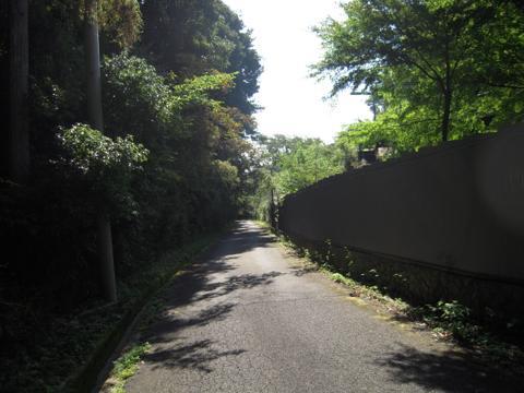tarumi_69.jpg