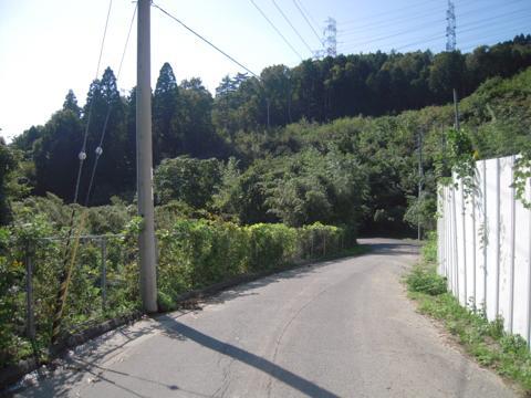 tarumi_72.jpg