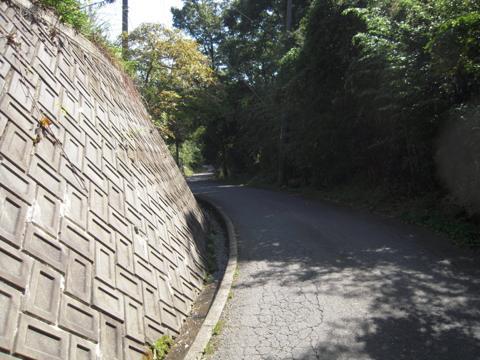 tarumi_92.jpg