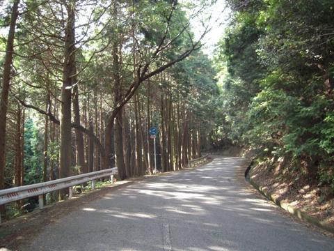 tengu_08.jpg
