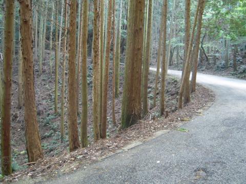 tengu_09.jpg